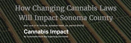 Cannabis Impact Press Release